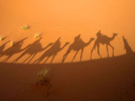 Shadow of caravan Stock Photo - 331384