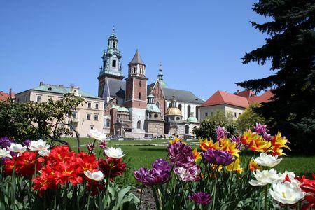 wawel: Wawel castle and garden