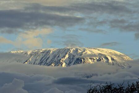 kilimanjaro: kilimanjaro Stock Photo