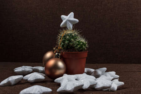 Creative Christmas tree, cactus with gold ball decoration and shiny stars, gift card background concept on brown background