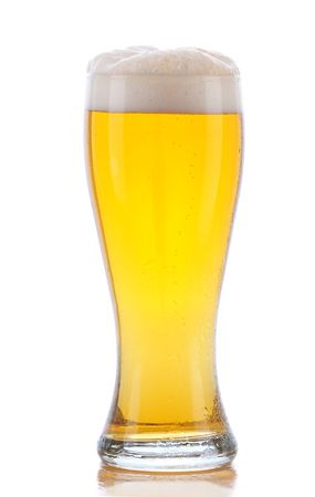 pilsner glass: Glass of Beer with Reflection isolated on white