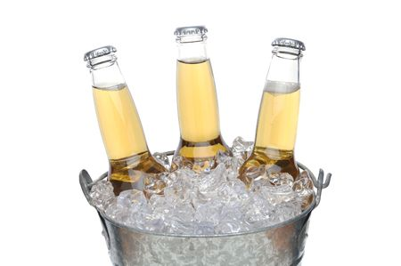Three Clear Beer Bottles in a bucket of ice isolated on white horizontal format photo
