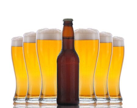 Six cold frosty glasses of beer behind brown beer bottle. Horizontal format over white with reflection. photo