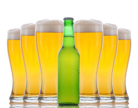 A green beer bottle standing in front of six cold frosty glasses with foamy tops. Horizontal format over white with reflections. Stock Photo - 12853788