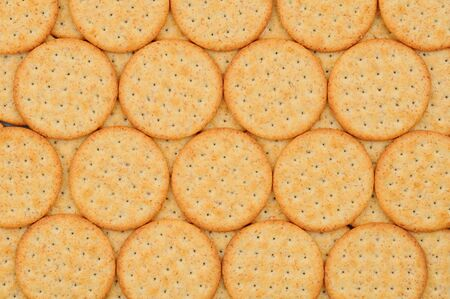 Closeup of a group of snack crackers lined up in a row. Reklamní fotografie