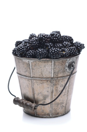 A pail of freshly picked blackberries on a white background with slight reflection. Vertical Format. Stock Photo - 13467396