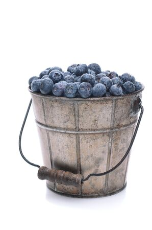freshly picked: A pail full of freshly picked blueberries. Vertical format isolated on a white background with slight reflection. Stock Photo