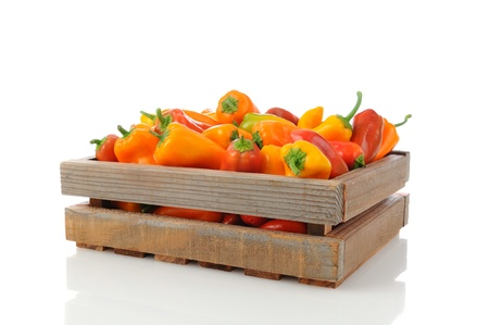 Assorted sweet peppers in a wood shipping crate. Horizontal over a white background with reflection. Stock Photo - 13996421
