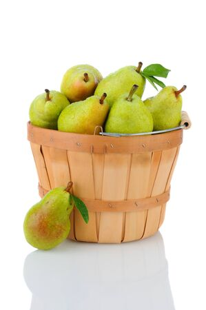 A basket full of fresh picked Bartlett Pears. Vertical format over a white background with reflection. Stock Photo - 15434671