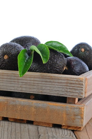 hass: Closeup of a wood crate full of ripe Hass Avocados Stock Photo