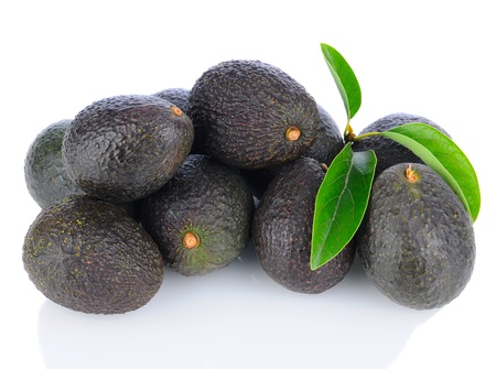 A pile of Hass Avocados with leaves photo