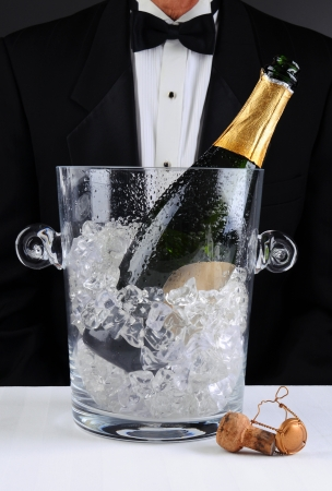 alcohol server: Closeup of a waiter standing behind a champagne bucket, Shallow depth of field man is unrecognizable. Vertical format.