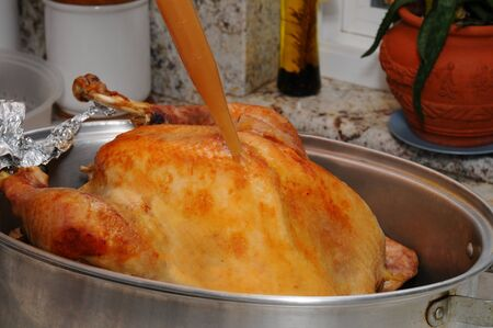 Closeup of a Thanksgiving Turkey being basted with its own juices. Horizontal format. Stok Fotoğraf - 16516015