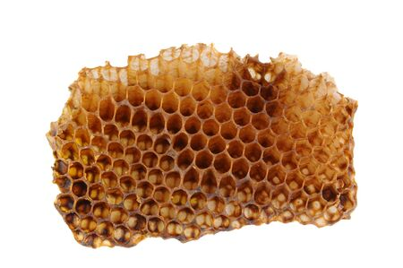 Closeup of a section of Honeycomb isolated on a white background. Reklamní fotografie