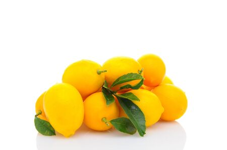 A pile of fresh picked lemons isolated on a white background. Horizontal format with refelction. Stock Photo - 17115323