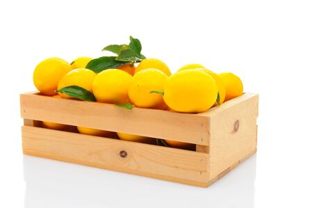 A wooden crate full of fresh picked lemons. Hroizontal format isolated ona white background with reflection. Stock Photo - 17115328