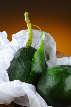 Closeup of two fresh picked avocados with stem and leaf in a wood packing crate and tissue paper. Vertical format with a light to dark warm background. Stock Photo - 18173665