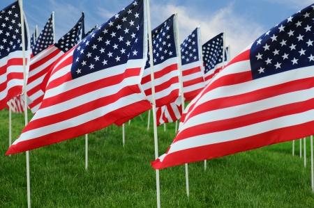 Gros plan d'un grand groupe de drapeaux américains dans un champ d'herbe avec un ciel bleu nuageux. Banque d'images - 19911655