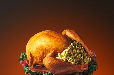 A roasted Thanksgiving turkey with all the trimmings on a light to dark warm background