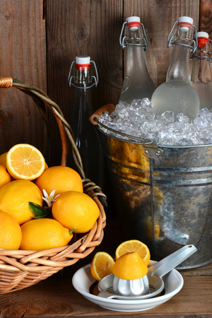Bottles of fresh squeezed lemonade in a metal bucket filled with ice. A basket of lemons and a juicer fill out the rustic still life. Vertical format. photo