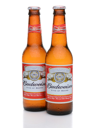 IRVINE, CA - MAY 27, 2014: Two bottles of Budweiser with condensation. From Anheuser-Busch InBev, Budweiser is one of the top selling domestic beers in the United States. Editorial