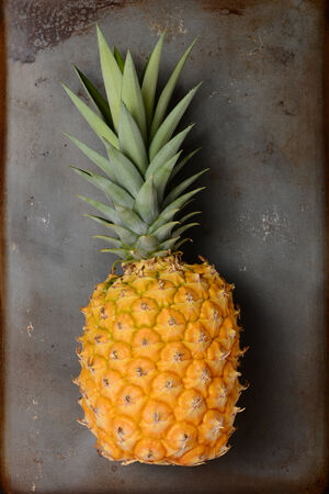 High angle view of a fresh picked pineapple laying on its side on a metal baking sheet. The fruit is golden in color with its green top still attached. Vertical format.