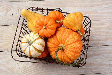 high angle shot: High angle shot of a variety of decorative pumpkins and gourds in an old wire shopping basket. Horizontal format on a rustic white wood table.