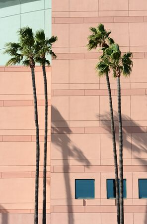 afl: ANAHEIM, CA, FEBRUARY 11, 2015: Building Detail of the Honda Center in Anaheim, California. The arena is home to the NHLs Ducks and Arena Football Leagues Kiss.