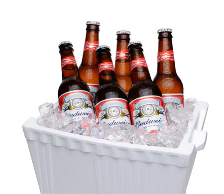 IRVINE, CA - JULY 14, 2014: Budweiser Bottles in Styrofoam Ice Chest. From Anheuser-Busch InBev, Budweiser is one of the top selling domestic beers in the United States. Publikacyjne