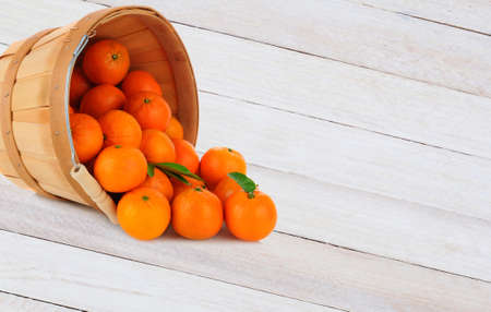 clementine fruit: A basket of Clementine Mandarin Oranges tipped on its side with fruit spilling onto a rustic wood table.