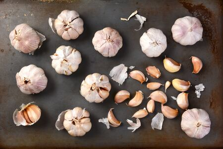 garlic clove: High angle view of garlic bulbs and cloves on a metal baking sheet. Whole bulbs and cloves are spread out on the surface. Horizontal format.