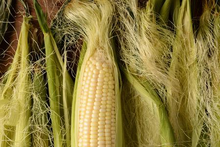 Een oor van vers geplukte maïskolven. Het is partiall ontdane en omgeven door meer zijde en schil in horizontale indeling. Stockfoto - 42689828