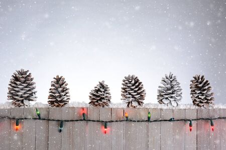 A rustic wood fence with pine cones lined up on top. Christmas lights and snow flakes round out the holiday scene.