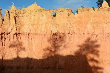 rock formation: Shadows from bristlecone pine trees on rock formation in Bryce Canyon National Park, Utah.