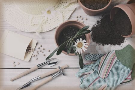 overhead shot: A retro instagram style shot of a gardening still life. Overhead view in horizontal format. Stock Photo
