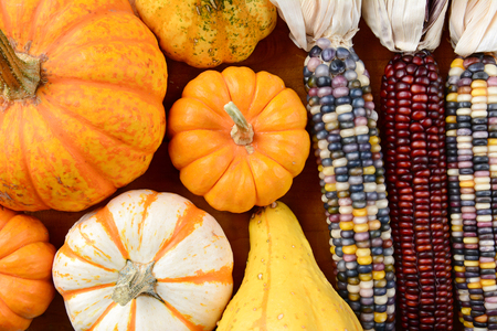 gourds: Overhead view of Gourds and Indian Corn filling the frame. Assorted decorative pumpkins, gourds and colorful flint corn, in horizontal format.
