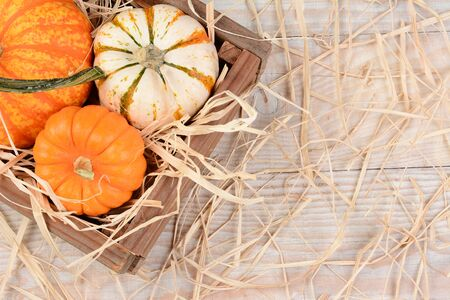 high angle: Overhead view of a wooden crate with different decorative pumpkins on a rustic wood table with straw. Horizontal format with copy space. Stock Photo