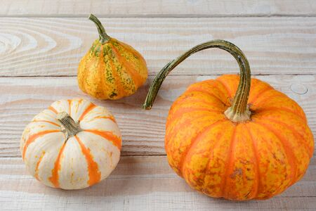 gourds: Decorative Gourds and Pumpkins on Wood table.
