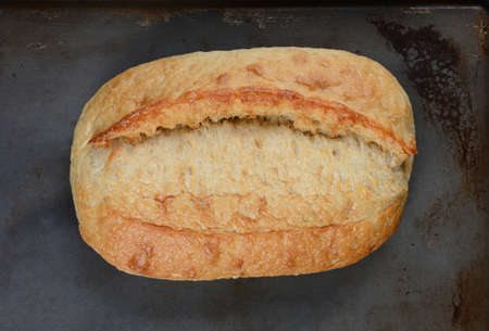 bread: High angle view of a fresh baked loaf of bread on a baking sheet.