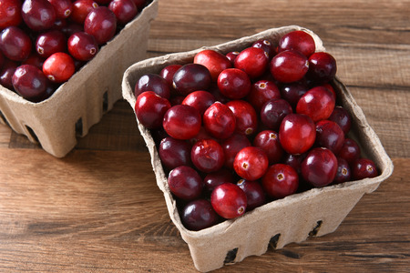 horizontal format: Closeup of two cardboard baskets of fresh whole cranberries. Horizontal format seen from a high angle.