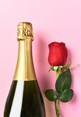 Closeup of a bottle of champagne and a single red rose against a pink background.