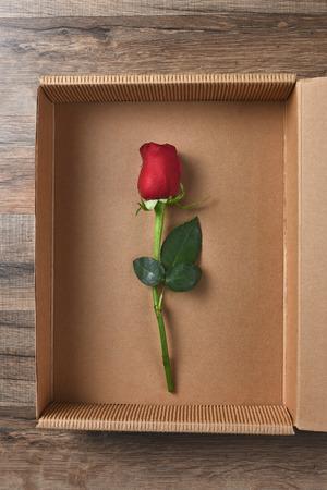 rosas rojas: Un solo rojo tallo largo rosa yema en una caja de cartón. Foto de archivo