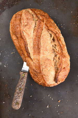 healthful: Still life of a loaf of county style white bread on a baking sheet. There is a knife stuck in the side of the loaf.