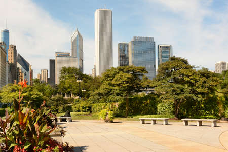 city park skyline: CHICAGO, ILLINOIS - AUGUST 22, 2015: Chicago skyline seen from an area of Grant Park. The park is in the Loop area of the city.