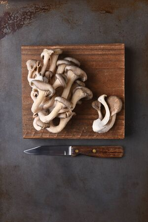 paring: Oyster mushrooms on a wood cutting board on a metal surface with a paring knife. Top view in vertical format with copy space. Stock Photo