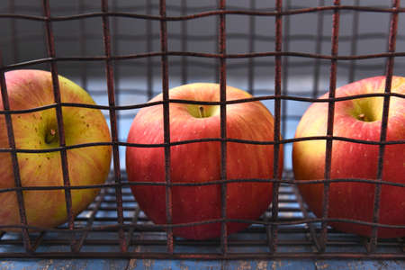 metal wire: Closeup of three apples in a metal wire basket.