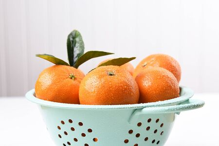 Closeup of a colander filled with fresh picked mandarin oranges.  Stock Photo