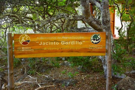 cristobal: SAN CRISTOBAL ISLAND, GALAPAGOS - FEBRUARY 17, 2017: Jacinto Gordillo Breeding Center. Located in the northeast part of San Cristobal Island, about one hour by car from Puerto Baquerizo Moreno. Editorial