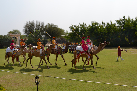 JAIPUR, INDIA - NOVEMBER 13, 2015: Dera Amer Elephant Safari Camel Polo. The camp is run by a local family and operates out of their ancestral home.