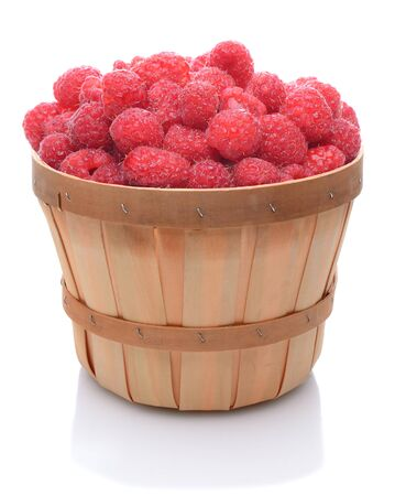 A basket full of freshly picked red ripe raspberries over white.